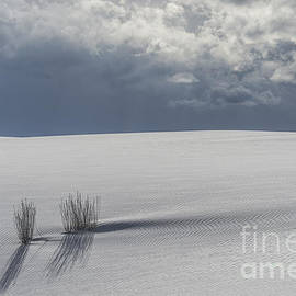 Sandra Bronstein - Storm At White Sands