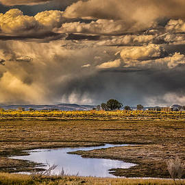 Janis Knight - Storm over Carson Wetlands