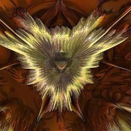 Pauline Olney - Strange Butterfly