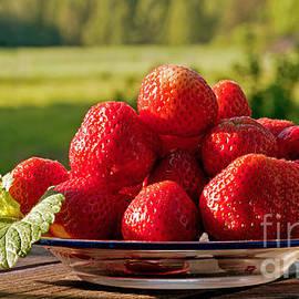 Torbjorn Swenelius - Strawberry fields