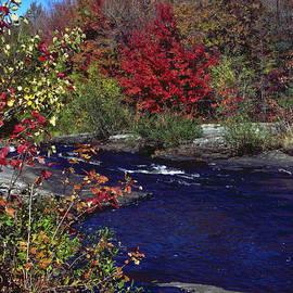 Sally Weigand - Stream in Autumn