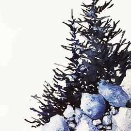 Teresa Ascone - Study of Rocks and Trees