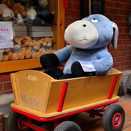Imran Ahmed - Stuffed donkey toy in wooden barrow cart