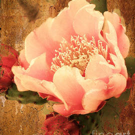 Beverly Guilliams - Stunning Pink Prickly Pear