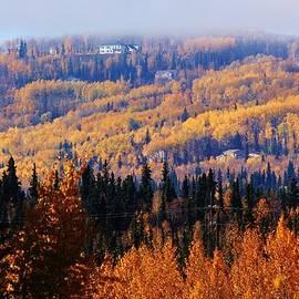 David Broome - Fairbanks Autumn