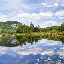 Alan L Graham - Summer At Marshfield Pond
