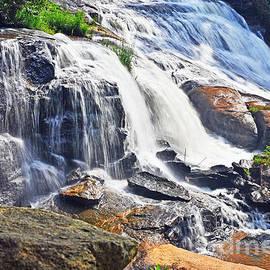 Elvis Vaughn - Summer at the Falls