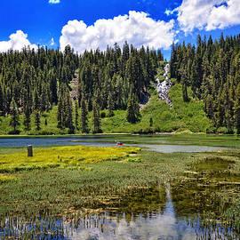 Lynn Bauer - Summer Beauty at Twin Lakes