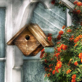 Mike Savad - Summer - Birdhouse - The Birdhouse