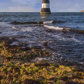 Ian Mitchell - Summer Lighthouse