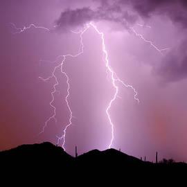 Douglas Taylor - Summer Lightning Ii