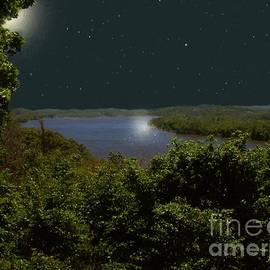 RC deWinter - Summer Night on Seventh Sister