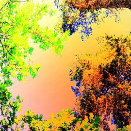 Hilde Widerberg - Summer Sky