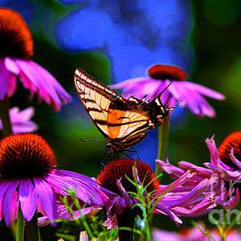 Susanne Still - Summer Sunday in the Garden
