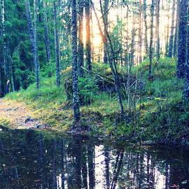 Hilde Widerberg - Sun Breaking Through