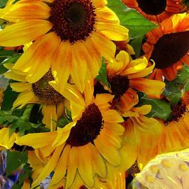 Kathy Bassett - Sun Fall