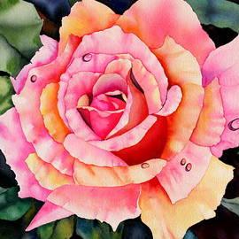 Eva Nichols - Sun-kissed Rose II
