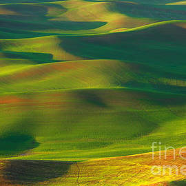 Reflective Moment Photography And Digital Art Images - Sun Painted Hills
