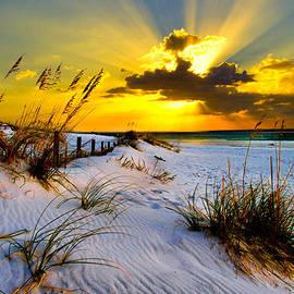 Eszra Tanner - Sun Rays Golden Landscape