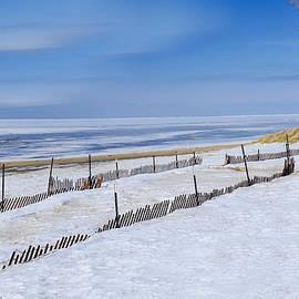 LeeAnn McLaneGoetz McLaneGoetzStudioLLCcom - Sun Sand and Snow