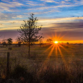 Bob Marquis  - Sun Up in Southern Texas