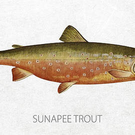 Sunapee Trout