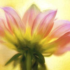 Mary Jo Allen - Sunburst Painted