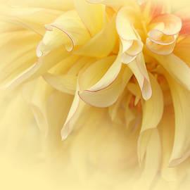 Jennie Marie Schell - Sunburst Yellow Dahlia Flower