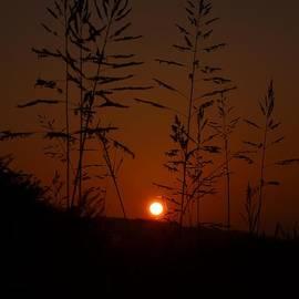 Maria Urso  - Sundown at 7