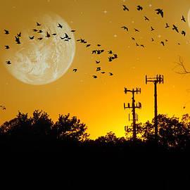 Brian Wallace - Sundown Fantasy Orange