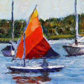 David Zimmerman - Sunfish on the Potomac
