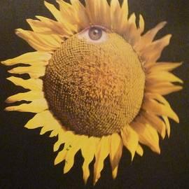 Douglas Fromm - SunFlower Eye