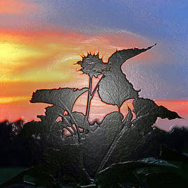 Tina M Wenger - Sunflower Sunset