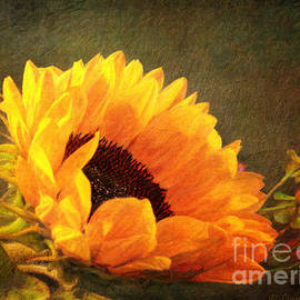 Lianne Schneider - Sunflower - You Are My Sunshine