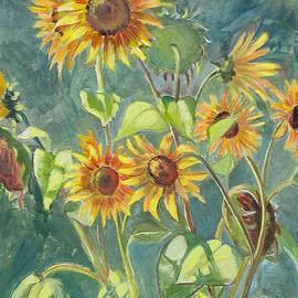 Dominique Amendola - Sunflowers