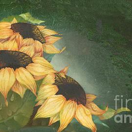 Doreta Y Boyd - Sunflowers
