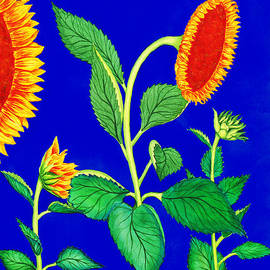 Palmer Stinson - Sunflowers