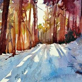Spencer Meagher - Sunlight Thru The Pines