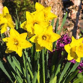 Georgia Mizuleva - Sunny Daffodil Bouquet - Impressions Of Spring