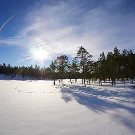 Jouko Lehto - Sunny day on a lake
