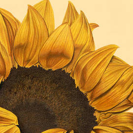 Sarah Batalka - Sunny Flower