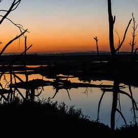 Denise Dube - Sunrise Across the Sacred Land