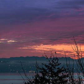 E Faithe Lester - Sunrise and Silhouettes