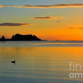 Elmar Langle - Sunrise at Departure Bay
