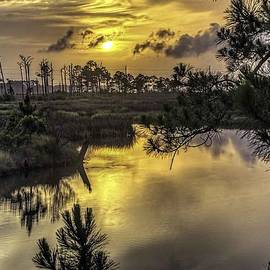 Michael Thomas - Sunrise at Gulf Shores Bayou