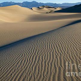 Sandra Bronstein - Sunrise at Mesquite Flat Sand Dunes