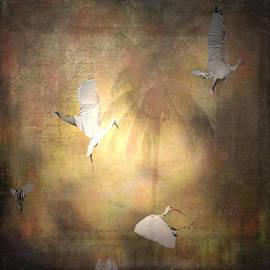 Irma BACKELANT GALLERIES - Sunrise FLIGHT