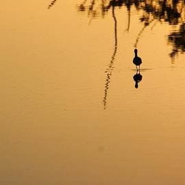 Chuck  Hicks - Sunset On A Stilt 2