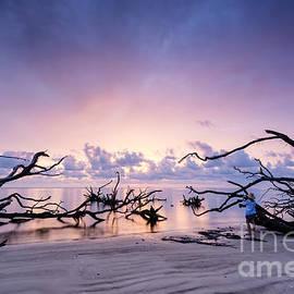 Dawna  Moore Photography - Sunrise over Blackrock Beach