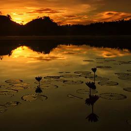 Jojie Alcantara - Sunrise over Lake of Lilies